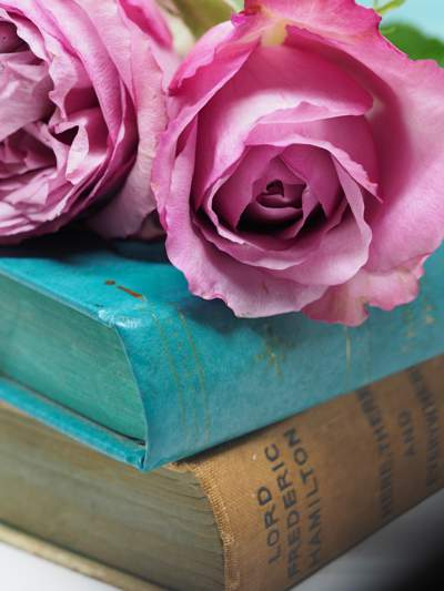 Close-up of two pink roses on top of a stack of two old hardcover books.